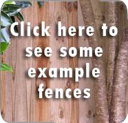 fencing fencer